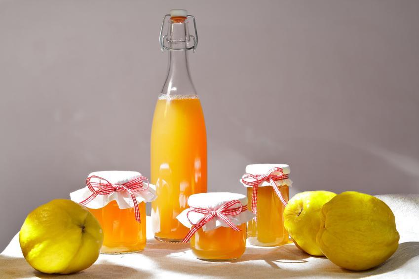Sok z pigwy w butelce i świeże owoce pigwy na stole, a także pigwa na zimę i przepisy