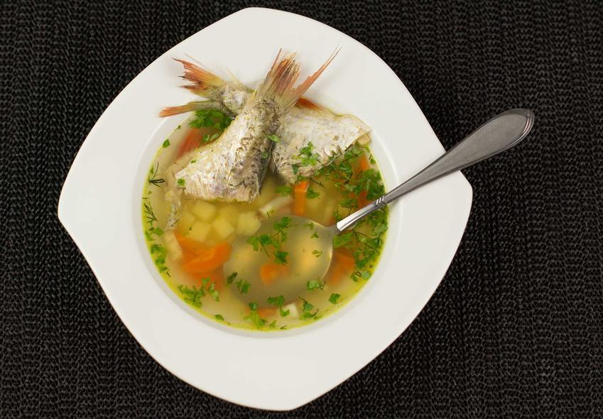 Zupa rybna z dorsza z warzywami na lekkim bulionie, a także przepisy na smaczną, szybką i prostą zupę rybną