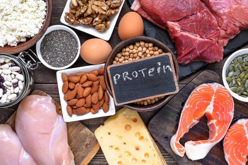 Proteiny, czyli podstawa diety na masę, a także najlepsze diety na masę, zasady, przepisy oraz skuteczność