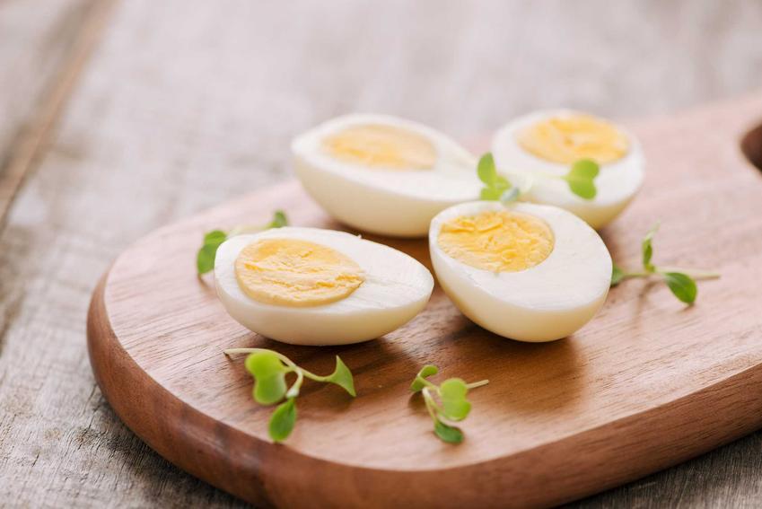 Jajka, podstawa na diecie kopenhaskiej, a także zasady diety, jadłospis, przepisy i informacje oraz kontrowersje