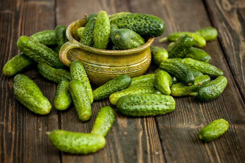 Zielone ogórki na stole i w miseczce, a także prawdy i mity na temat różnych teorii dotyczących jedzenia