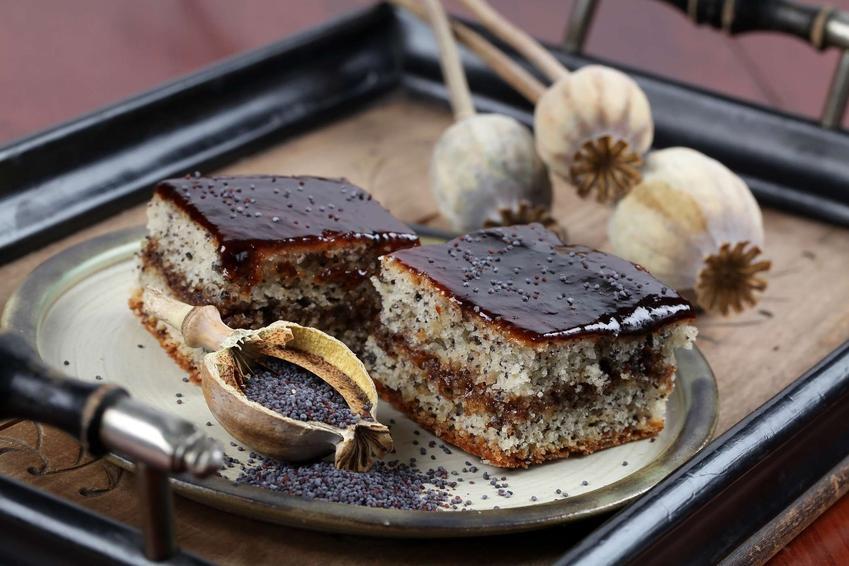 Ciasto makowa panienka podane na okrągłym talerzyku. Dookoła niego leżą makówki z makiem.