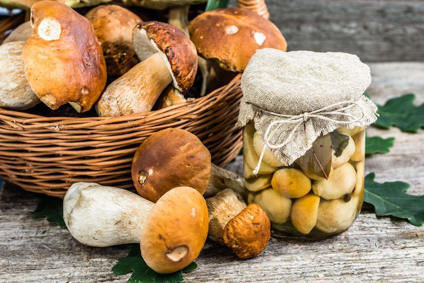 Słoik z grzybami w occie stoi obok koszyka ze świeżymi grzybami leśnymi.