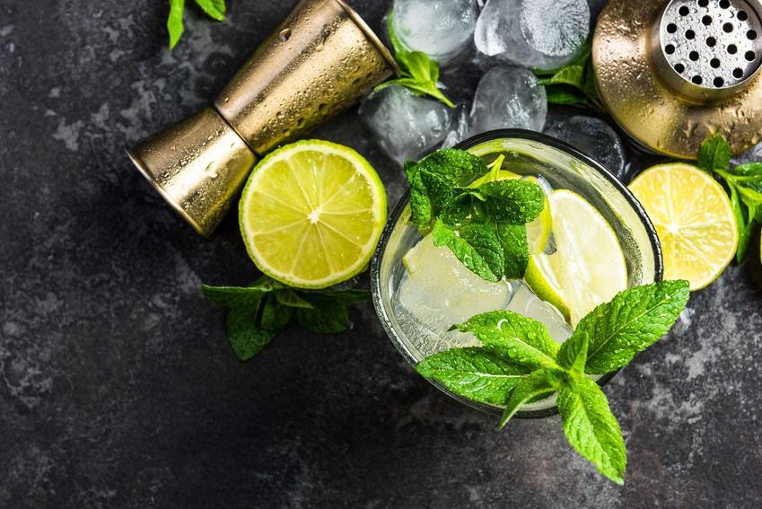 Mojito drink podany w przezroczystej szklance. Udekorowany jest listkami mięty.