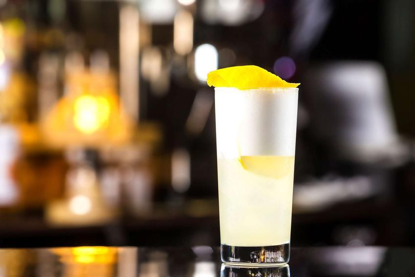 Gin fizz podany jest w wysokiej szklance. Całość udekorowana jest kawałkiem skórki z cytryny.