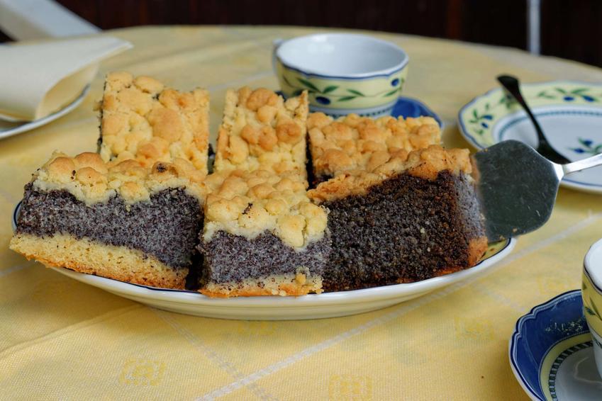 Talerz z kawałkami makowca z kruszonka, między którymi leży łopatka do ciasta.
