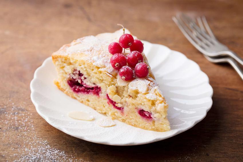 Kawałek ciasta z malinami na dekoracyjnym talerzyku. Ciasto udekorowane jest cukrem pudrem.